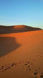 砂漠の夜明けブログ用.jpg
